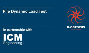 Dynamic load test